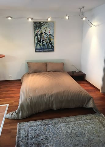 Studio with private parking and beautiful views - Blonay - Appartement