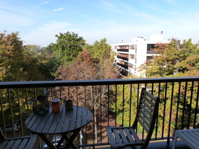 Proche Versailles & Paris- Near Versailles & Paris - La Celle-Saint-Cloud - Apartmen