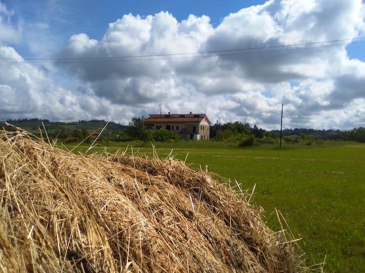 Lajatico.... il sogno toscano...  Casa Aida