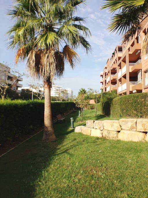 Jardim tranquilo nas traseiras/ Relaxing space