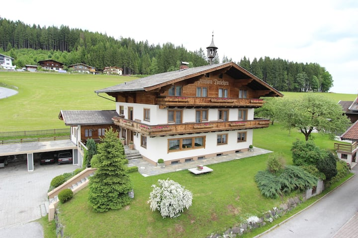 Stylish Apartment in Hollersbach im Pinzgau with Balcony