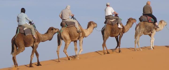 1 Nuit bivouac,Camel Trek,demi pension a Merzouga