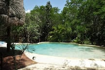 Palapa and the pool
