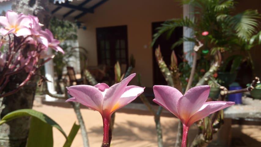 Mallika homestay's  cottage