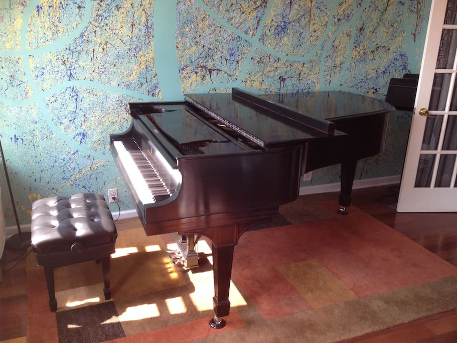 Excellent for music lovers - grand piano and plenty of sheet music available!