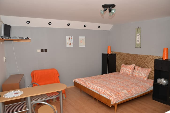 Lovely apartment in heart of Liptov - Závažná Poruba - Apartment