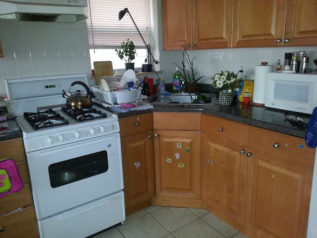 Sunny 1 bedroom apartment astoria apartments for rent for Aki kitchen cabinets astoria ny