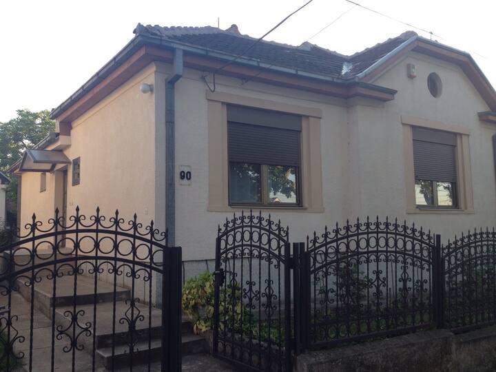 Charming house with backyard