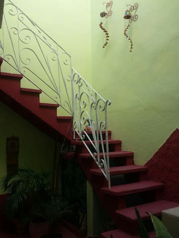 Stairs to the Nest