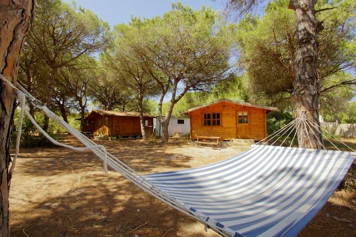 Cabañas de Verón en Conil de la Fra - Conil de la Frontera - Chalet