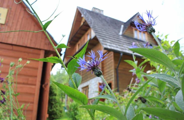 A unique wooden house - Brzegi - Chalet