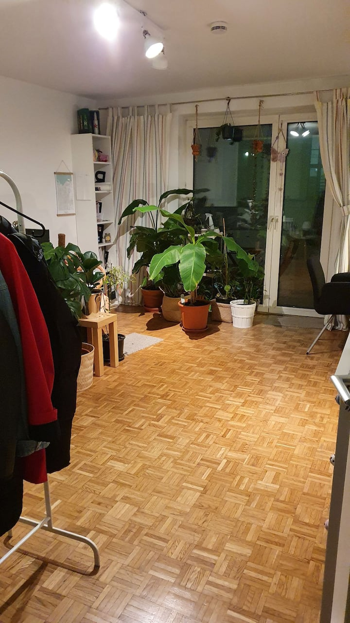Single Apartment in Maxvorstadt, Munich