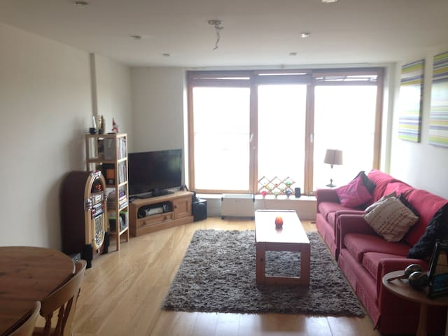 Cosy and Modern two bed apartment - Ringsend