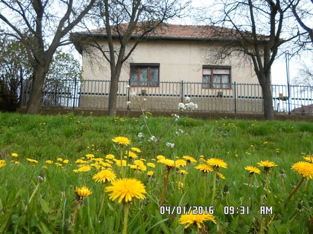 Fans of calmness and nature - Tiszakürt - Bed & Breakfast