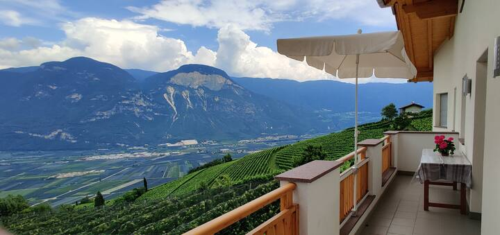 Relax in the vineyard with stunning views!