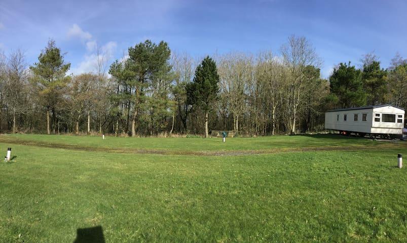 Woodland retreat- Oak Apple - Devon