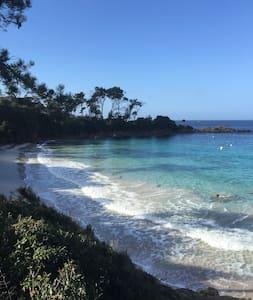 T2 neuf, proche plages et centre v - Sarrola-Carcopino