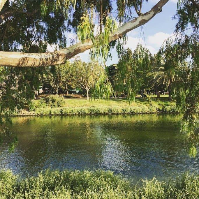 the  yarkon park