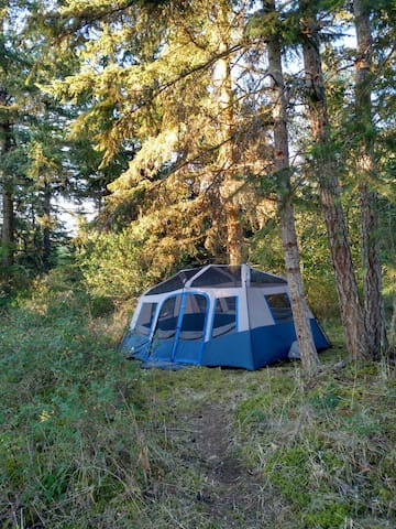 Cozy Hilltop Wall Tent 10'x14' - Deer Harbor