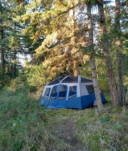 Cozy Hilltop Wall Tent 10'x14' - Deer Harbor - 帐篷