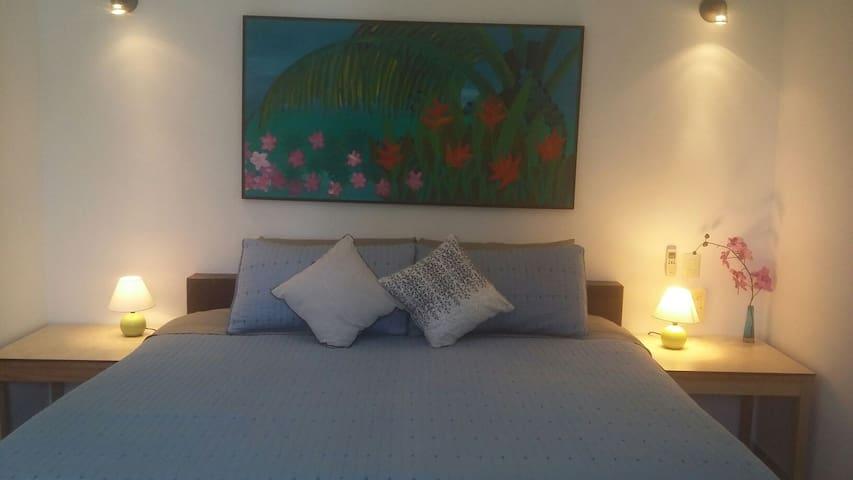 Apt 6 Casa Tranquila 5 min walk to sea & downtown - Cozumel - Huoneisto