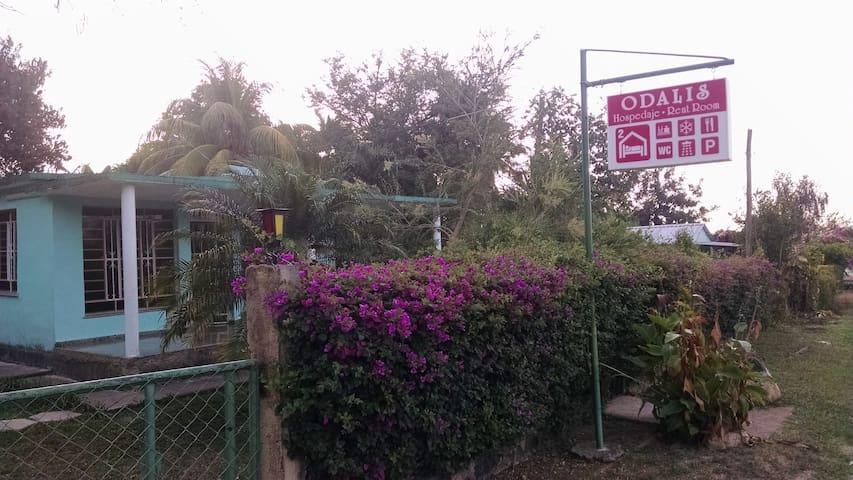 Casa Particular Odalis 1 (B&B) in Soroa - Soroa - Apartment