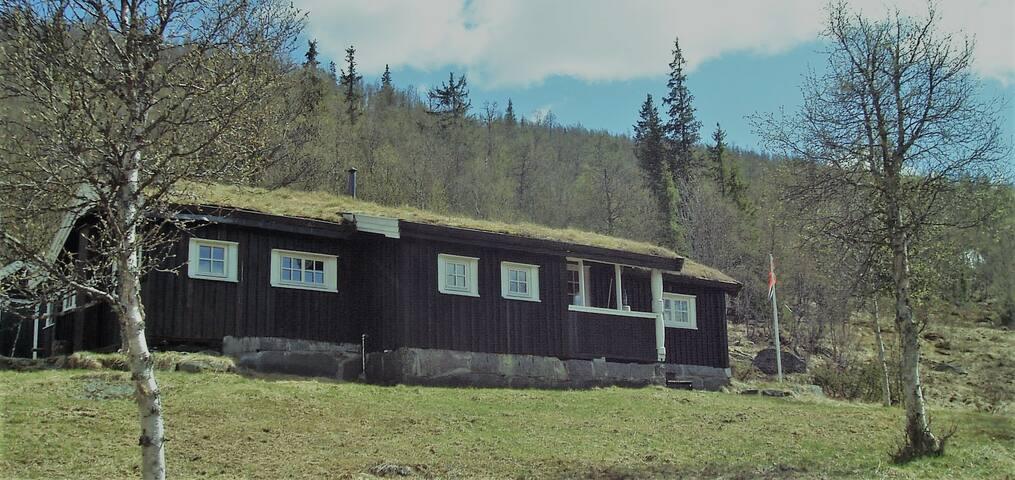 Falkberget