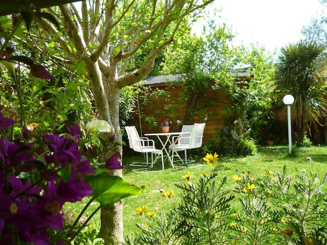 Appartamento con giardino e portico - Cesano - Apartamento