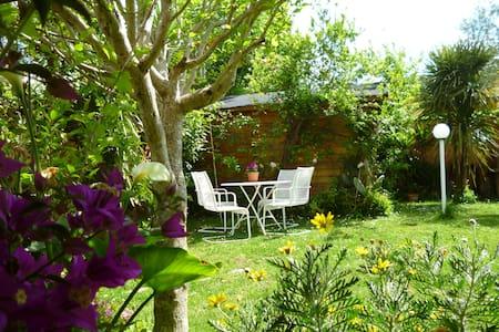 Appartamento con giardino e portico - Cesano - Pis