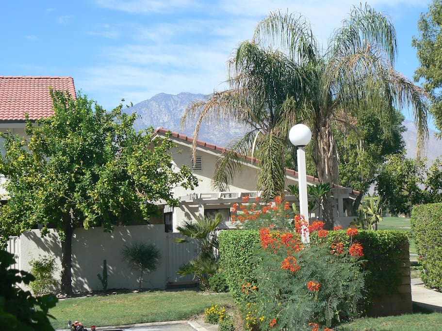 mountain shadows beauty houses for rent in palm springs california united states