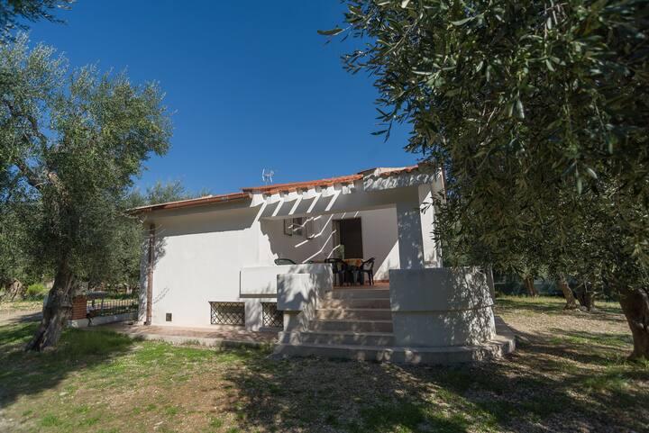 Villa singola bi-famigliare a 200 metri dal mare