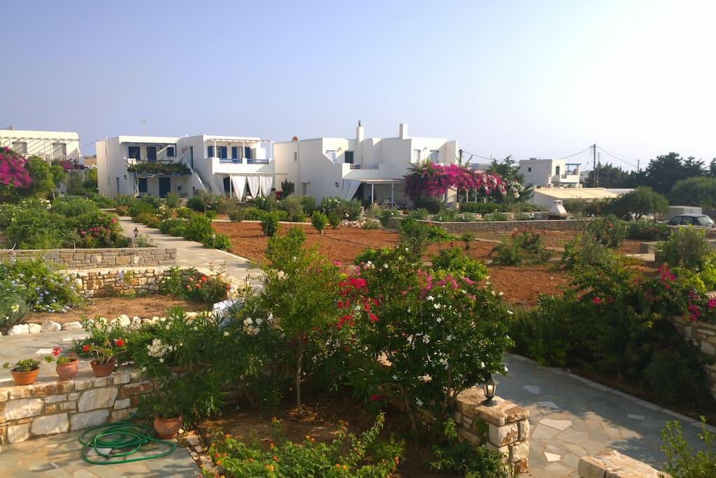 Delavinias gardens