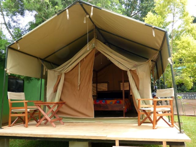 BlueMonkey Safari Tent
