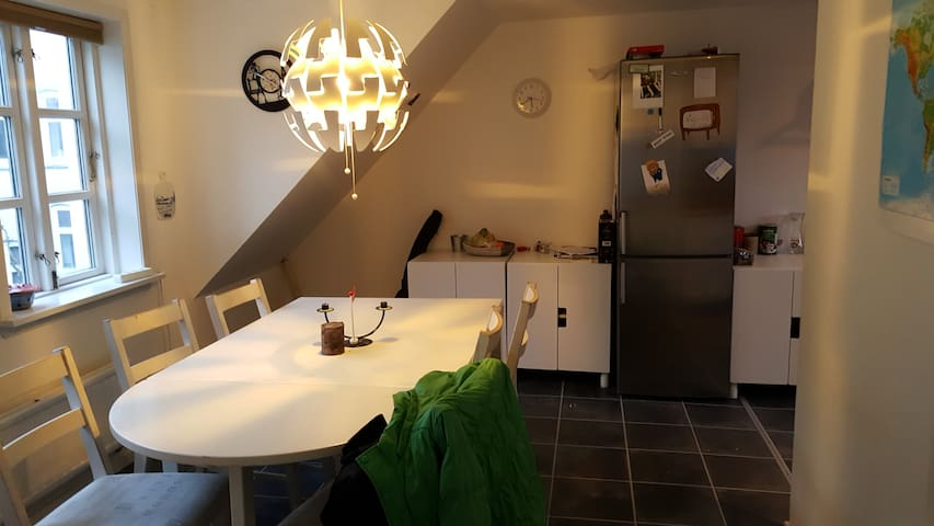 Cosy flat in center of Odense - Odense - Apartamento