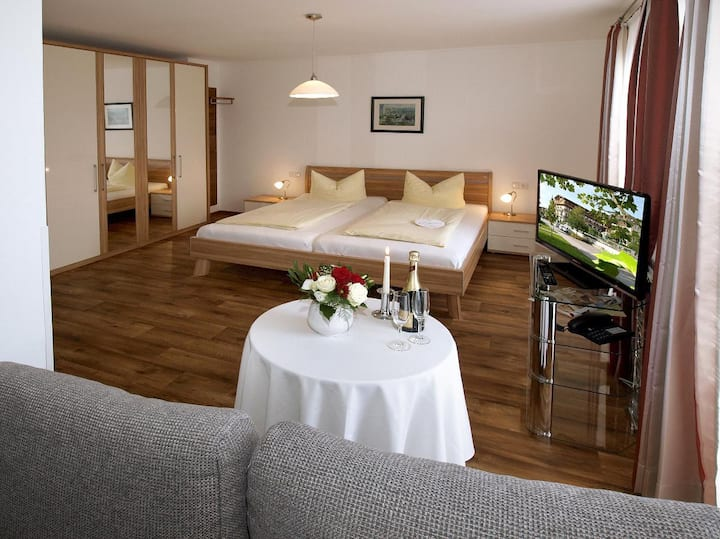 Hotel zum Goldenen Anker (Windorf), EZ Donau ohne Balkon Parterre (20qm)