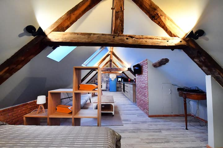 LOFT SOUS LES COMBLES - LOFT UNDER THE RAFTER