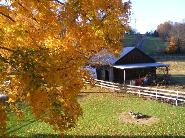 It's Fall You All! 3 BR conveniently located.