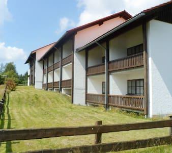 1 Zimmer Wohnung im Kreuzbachhof - Haidmühle