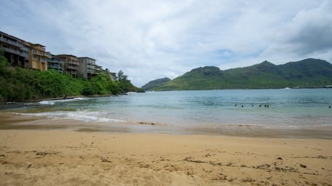 Kauai condo up to 6 people near beaches and shops.