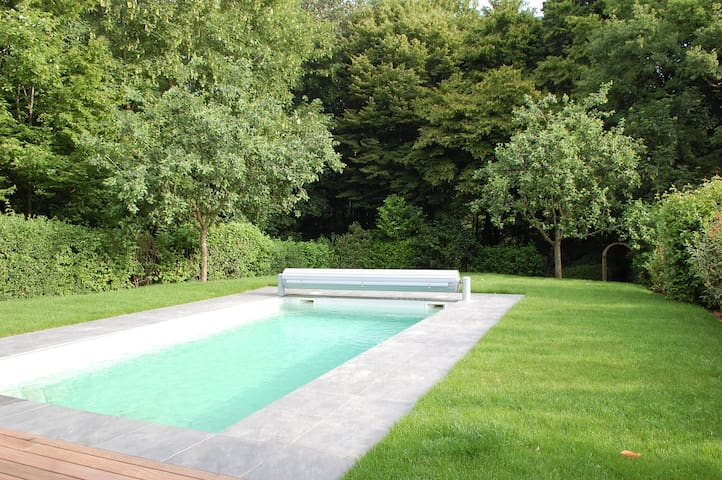 Contemporary house with swimming pool and garden