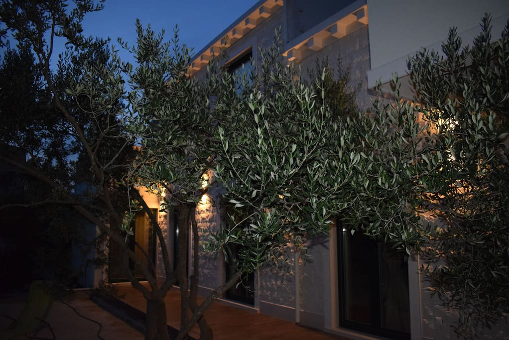House-garden view at night