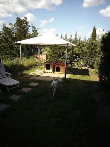 Relax in campagna - Castelfiorentino - House