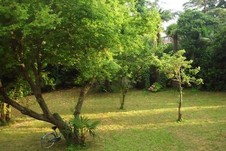 Villa + Casa nel giardino - Lido - Villa