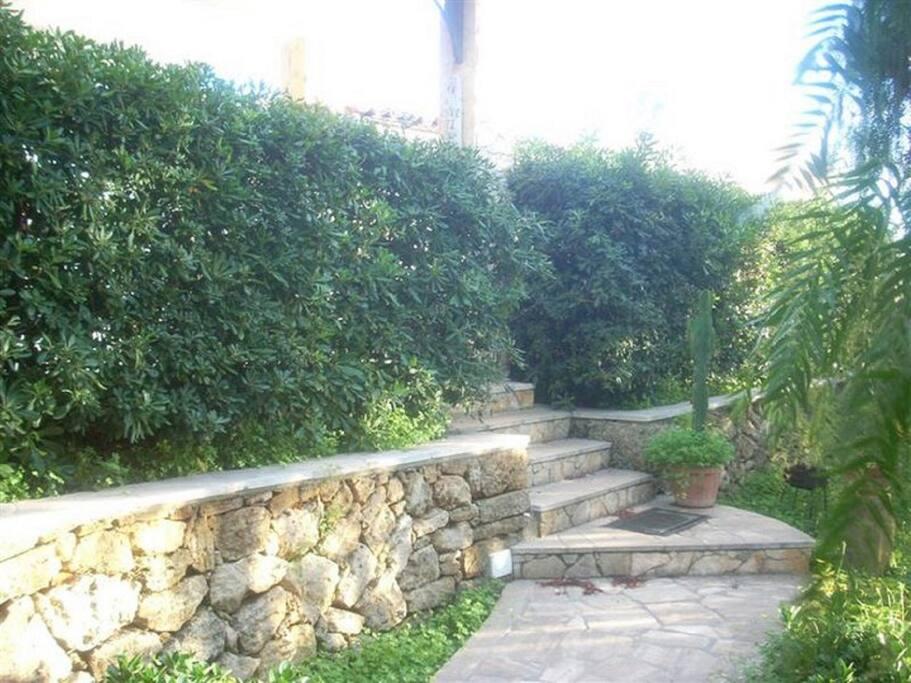 Siepe e tipico muro siciliano.