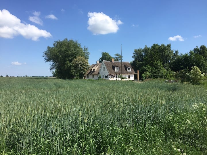 Charming & idyllic country house, large property