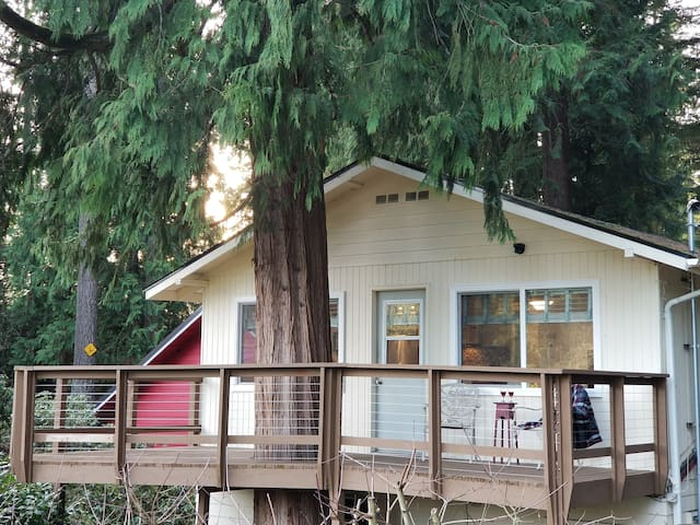 Tree House at Lake Killarney. Wooded Lake Retreat!