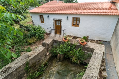 The Watermill | O Moinho da Ribeira