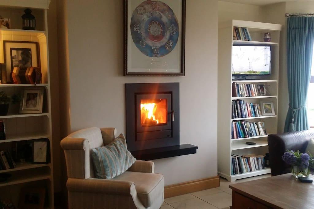 Modern wood burner set into the wall