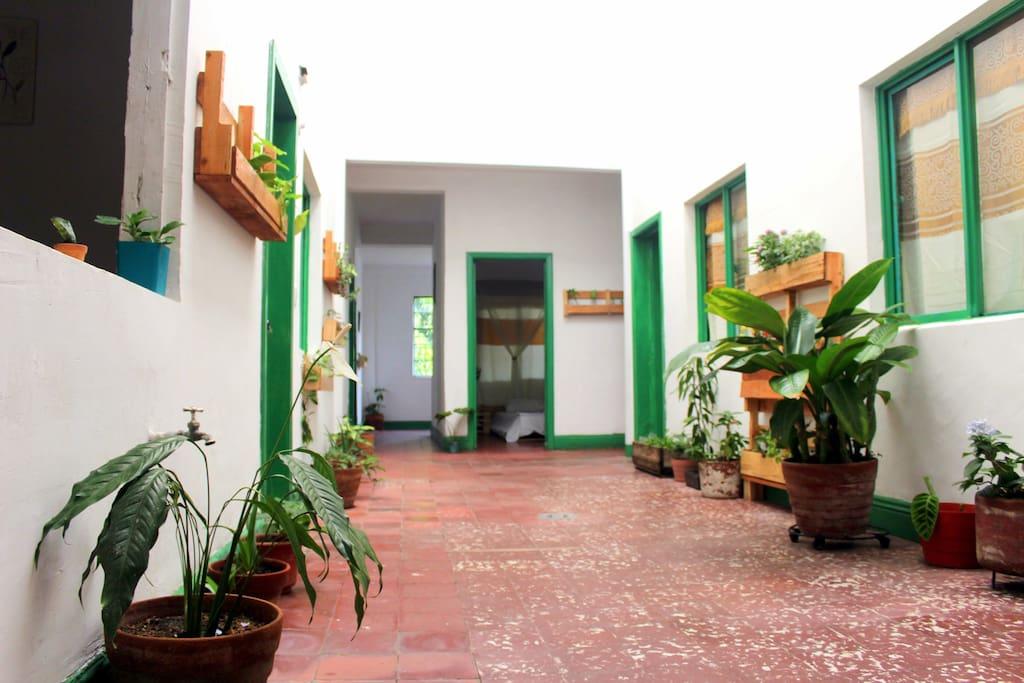 Main hall - Pasillo principal