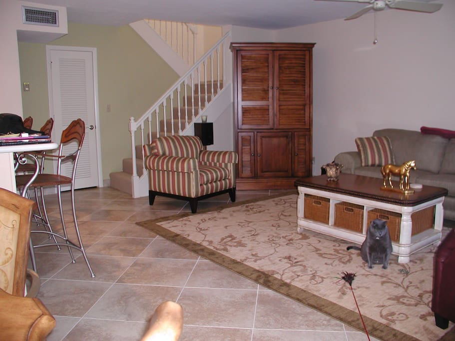 beautifully furnished (No pets live here anymore:()